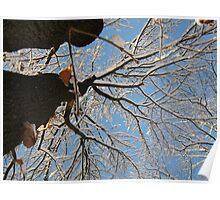 Feb. 19 2012 Snowstorm 160 Poster