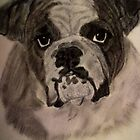 Bulldog by DianeL
