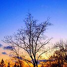 Ending to a cold day by G.T.S Photos