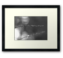 Arlo's Stick Framed Print