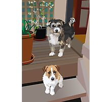 Tommy and Ned Photographic Print