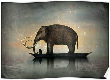 Silent night by Catrin Welz-Stein