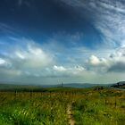 Roadside Path over the Moors by Brian Barnett