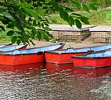 Pretty rowing boats, all in a row. by Woodie