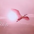 Hope by Bonnie T.  Barry