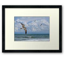 As The Birds Fly Framed Print