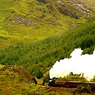 Steam Train on the Fort William to Mallaig railway by bryanrqueen