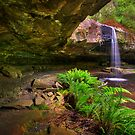 Lower Kalimna Falls - Otways by Hans Kawitzki