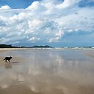 Tallow Beach by Zefira