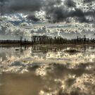 Big Muddy River by Dale Lockwood