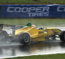 Felipe Nasr in the Wet by Rhiannon D'Averc