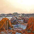 Fishing Nets - orange by Shamila Chady