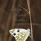 Hold on tight to your dreams {Mauds for the Challenge Acceped Challenge} by Jeannie26