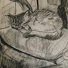 cat sleeping by Alfred Gillespie