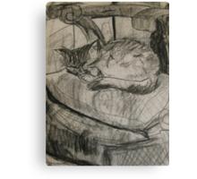 cat sleeping Canvas Print