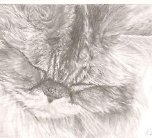 The Purring Cat by RebeccaVose