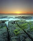 """""""New Life on Old Shores"""" ∞ Woody Head, NSW - Australia by Jason Asher"""
