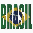 Brazilian flag by stuwdamdorp