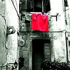 A Red Towel by Michele Filoscia