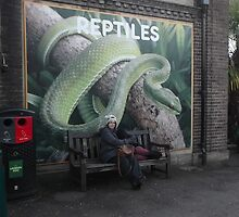 Regent's Park, London Zoo by Paul Ramnora by paulramnora