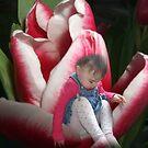 my little flower by Ann Persse