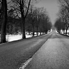 The road by Ulf Bjolin