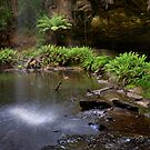 Lower Kalimna Falls 2 - Otways by Hans Kawitzki