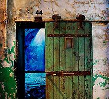 The Cell  by Debra Fedchin