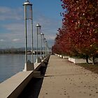Path by Lake Burley Griffin Canberra by Tony Theobald