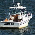 A Boat named Moses by Linda Jackson