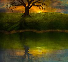 Silent Tree I by Megan Noble