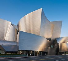 Disney Concert Hall by Radek Hofman