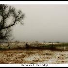 Beyond the mist by vince dwyer