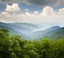 Blue Ridge Parkway - Craggy Gardens Overlook by Dave Allen