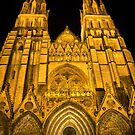 The Bayeux Cathedral at Night  (1) by Larry Lingard-Davis