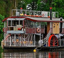 Paddle Wheeler. by Julie  White