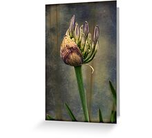 Spring Will Come Again Greeting Card