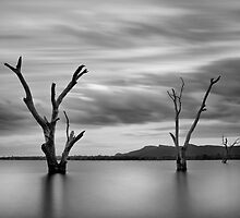 Three Dead Trees 2 - Lake Fyans The Grampians by Graeme Buckland