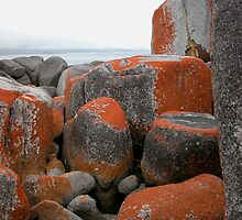 Rocks and Orange Lichen, Binalong Bay,Tasmania, Australia. by kaysharp