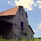 Summer Barn by Annlynn Ward