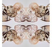 Quadruple Loop Photographic Print