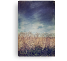 I Lived and Breathed for You Canvas Print