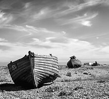 On Dungeness Beach by Andy Coleman