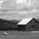 Old Maine Barn in Black and White by Judith Hayes