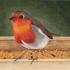 Red Robin by Catherine Gabriel