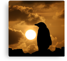 Penguin Silhouette Canvas Print