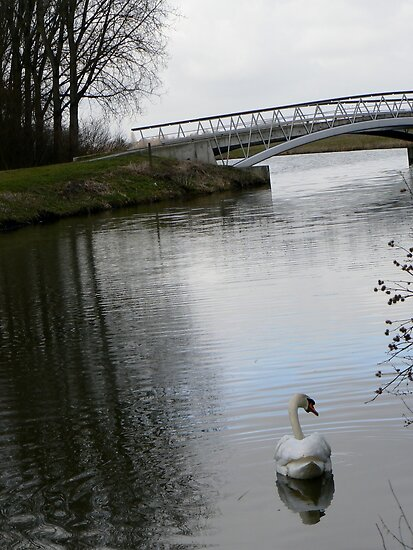 swan&bridge by LisaBeth