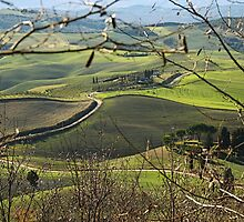 Toscana countryside by gluca
