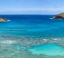 Hanauma Bay by diggle