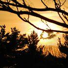 Setting Sun by MCloutier85